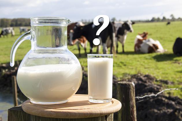latte di capra e prostata