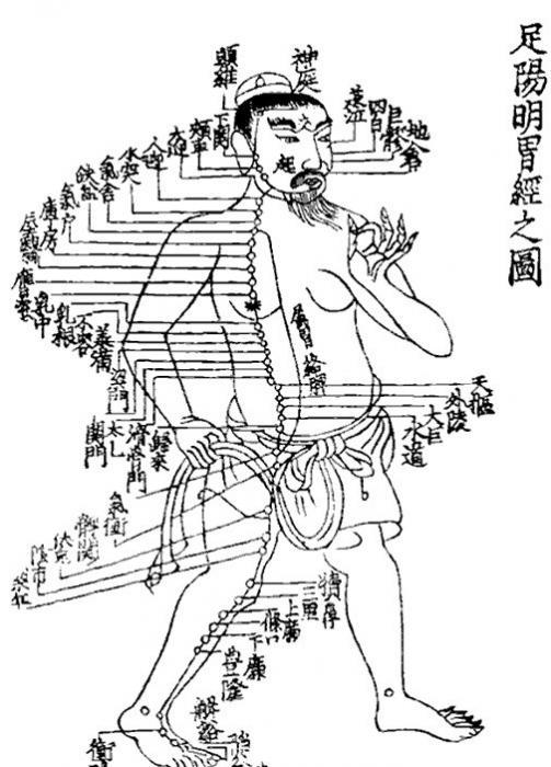 medicina tradizionale cinese per la prostata