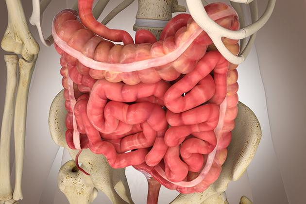 Sindrome del colon irritabile: invalidante e trascurata
