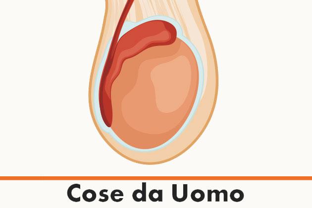 le infezioni della prostata